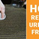 Remove Pet Urine Stains From Sofa