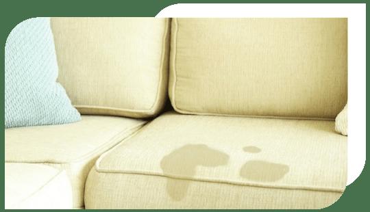 Sofa stain Service